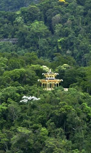 floresta-da-tijuca_1.jpg